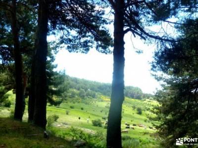 Chorro,Chorrera San Mamés_Valle del Lozoya;marcha 7 picos puerto somosierra villas romanas en espa?